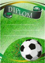 Diplom DL104