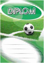 Diplom DL101