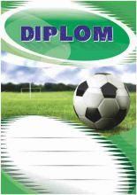 Diplom DL103