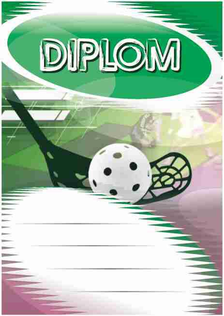 Diplom DL110