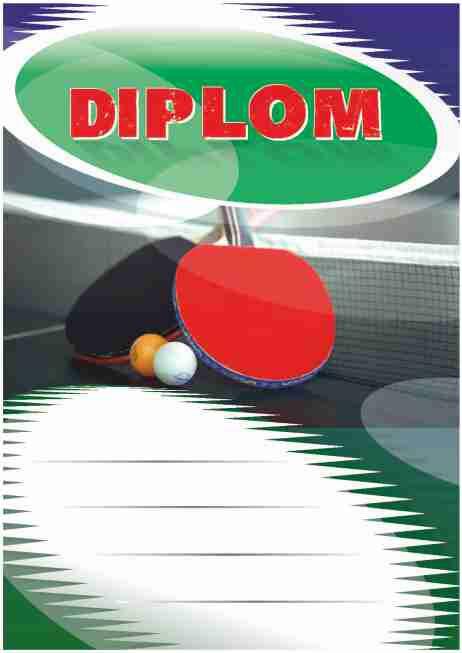 Diplom DL113