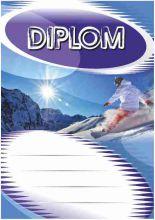 Diplom DL123