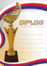 Diplom DL142