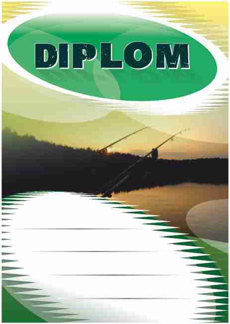Diplom DL143